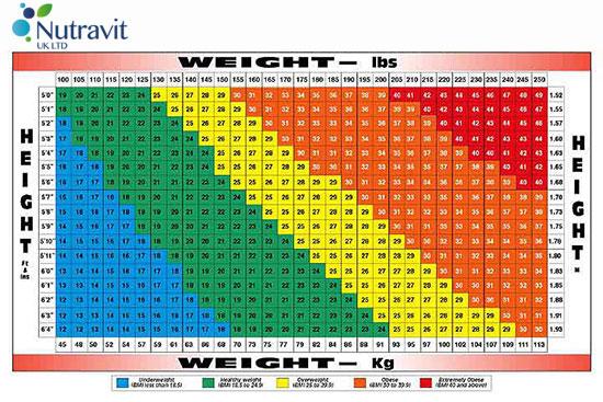 Vitatec Nutrition / BMI